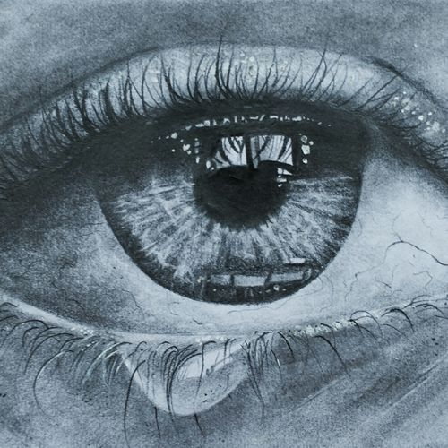the eye, 12 x 10 inch, dani poulose,photorealism drawings,paintings for living room,paper,pencil color,12x10inch,GAL027657003