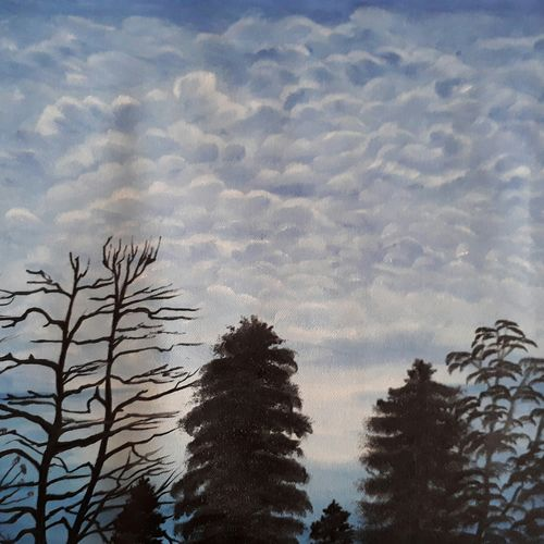clouds, 18 x 12 inch, pranav bhatnagar,nature paintings,paintings for bedroom,canvas,oil paint,18x12inch,GAL028027041Nature,environment,Beauty,scenery,greenery,trees,clouds