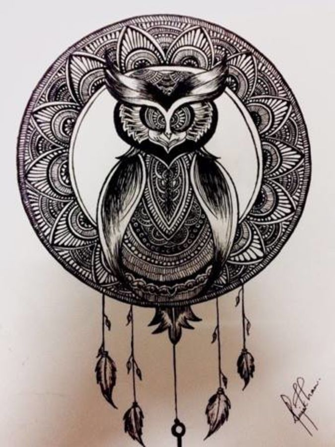 owl, 10 x 12 inch, alfiya khan,fine art drawings,paintings for bedroom,thick paper,pen color,10x12inch,GAL028037043