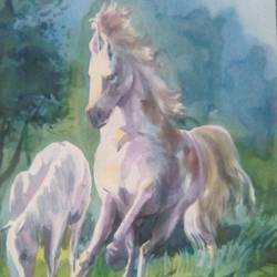 fast moving horse, 13 x 19 inch, rasheed p u,animal paintings,paintings for living room,horse paintings,drawing paper,watercolor,13x19inch,GAL027917110