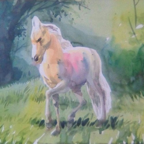 horse, 13 x 20 inch, rasheed p u,animal paintings,paintings for dining room,horse paintings,drawing paper,watercolor,13x20inch,GAL027917111