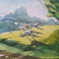 sheep's on a hill, 11 x 22 inch, rasheed p u,landscape paintings,paintings for bedroom,drawing paper,watercolor,11x22inch,GAL027917117