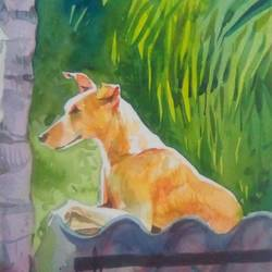 dog the real companion, 11 x 15 inch, rasheed p u,animal paintings,paintings for living room,handmade paper,watercolor,11x15inch,GAL027917120