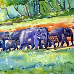 big family, 21 x 12 inch, raji p,landscape paintings,paintings for living room,canson paper,watercolor,21x12inch,GAL05907370