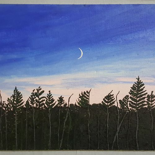 beautiful sky, 12 x 16 inch, retika chopra,landscape paintings,paintings for bedroom,canvas board,acrylic color,12x16inch,GAL030947593