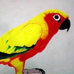 beautiful yellow parrot, 29 x 21 inch, ashish lokhande,wildlife paintings,paintings for living room,canvas,poster color,29x21inch,GAL031327648