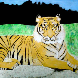 bengal tiger, 29 x 21 inch, ashish lokhande,wildlife paintings,paintings for living room,canvas,poster color,29x21inch,GAL031327652