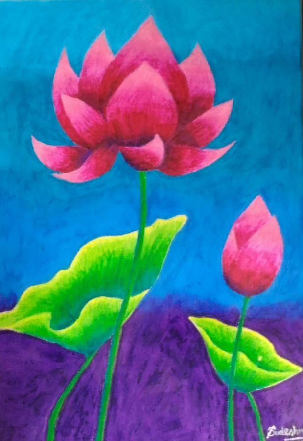 blooming lotus, 14 x 9 inch, sudeshna ballav,nature paintings,paintings for living room,flower paintings,drawing paper,pastel color,14x9inch,GAL032507876Nature,environment,Beauty,scenery,greenery