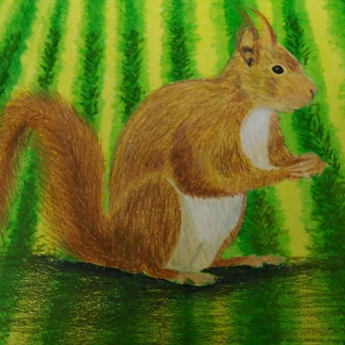 the squirrel with a naughty look, 14 x 10 inch, sudeshna ballav,animal paintings,paintings for living room,drawing paper,pastel color,14x10inch,GAL032507880
