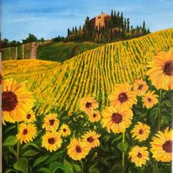 sunflowers, 12 x 16 inch, cheryl monis,flower paintings,canvas,oil,12x16inch,GAL032937939