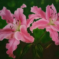 stargazer lilies, 14 x 10 inch, cheryl monis,flower paintings,paintings for living room,canvas,oil,14x10inch,GAL032937946