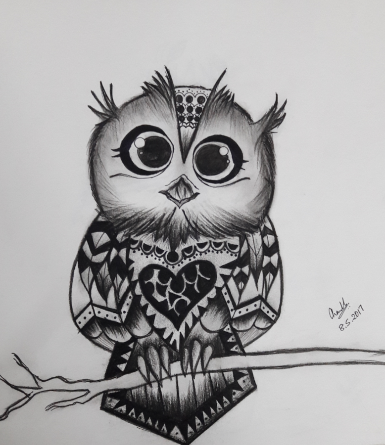 owl, 12 x 11 inch, chandhini chandrasekar ,modern drawings,paintings for living room,thick paper,charcoal,12x11inch,GAL032867958