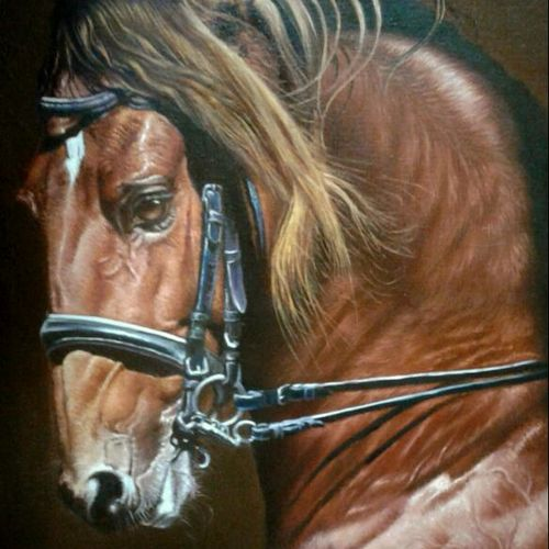 horse portrait, 22 x 30 inch, dinak divakaran,photorealism paintings,paintings for living room,horse paintings,canvas,oil,22x30inch,GAL02298174
