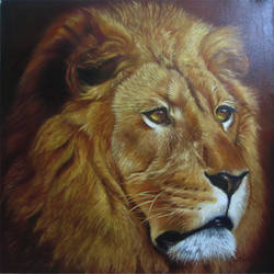 lion, 32 x 32 inch, dinak divakaran,animal paintings,paintings for living room,canvas,oil,32x32inch,GAL02298175