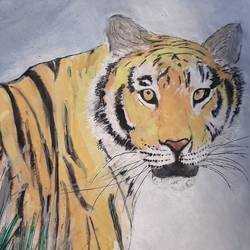 tiger, 8 x 11 inch, artmeetartist deepak,paintings,figurative paintings,thick paper,pastel color,8x11inch,GAL034548257