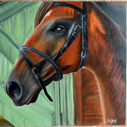 horse realistic, 24 x 19 inch, andriya mathew,realism paintings,paintings for living room,canvas,oil,24x19inch,GAL035038361