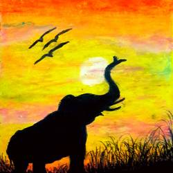 wildlife sunset bloom, 11 x 15 inch, megha n,paintings,wildlife paintings,paintings for living room,thick paper,enamel color,11x15inch,GAL036448565