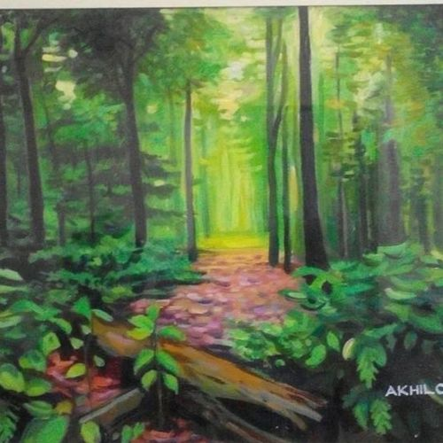 nature, 17 x 11 inch, akhil cleatus,paintings,landscape paintings,paintings for living room,canvas,oil paint,17x11inch,GAL036518589