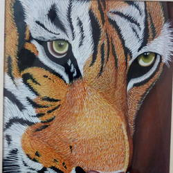 tiger, 6 x 7 inch, vishnu swarnkar,animal paintings,paintings for living room,ivory sheet,watercolor,6x7inch,GAL036388594