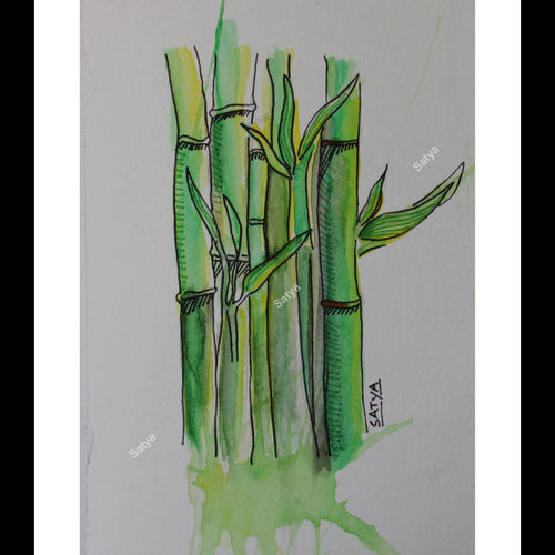 chinese bamboo, 4 x 7 inch, satya sinha,paintings for living room,paintings,nature paintings,canson paper,mixed media,4x7inch,GAL037428747Nature,environment,Beauty,scenery,greenery