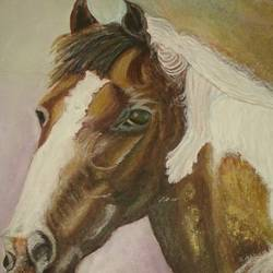 horse  17, 9 x 12 inch, dhinakaran ramalingam,animal paintings,paintings for living room,horse paintings,paper,mixed media,9x12inch,GAL037558784