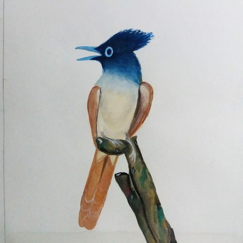 crest bird, 7 x 10 inch, pratik bawankule,paintings,nature paintings,paper,watercolor,7x10inch,GAL038718889Nature,environment,Beauty,scenery,greenery