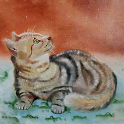 cat, 15 x 11 inch, shivani kamblekar,paintings,animal paintings,paintings for dining room,canson paper,oil,15x11inch,GAL038078968