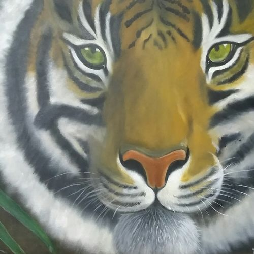 hopeful tiger, 32 x 26 inch, yacinta fernandes,paintings,wildlife paintings,paintings for living room,canvas,oil paint,32x26inch,GAL039128975