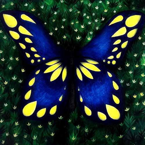 butterfly, 22 x 18 inch, seby augustine,paintings for living room,wildlife paintings,animal paintings,canvas,acrylic color,22x18inch,GAL0150904