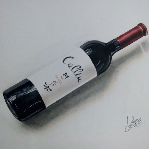 the bottle of callia, 17 x 12 inch, sujit sen,paintings,still life paintings,paintings for dining room,ivory sheet,watercolor,17x12inch,GAL039819169
