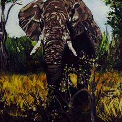 elephant, 16 x 12 inch, sandhyarani pai,paintings,wildlife paintings,paintings for living room,canvas,acrylic color,16x12inch,GAL040609302
