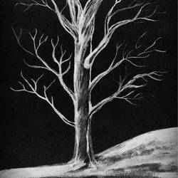 black and white, 12 x 10 inch, mousumi mazumdar,nature paintings,paintings for living room,vertical,canvas,acrylic color,12x10inch,GAL032449482Nature,environment,Beauty,scenery,greenery,alone,tree