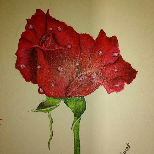 rose, 8 x 12 inch, ganta sri chandana,flower paintings,paintings for living room,love paintings,rice paper,acrylic color,8x12inch,GAL041619527heart,family,caring,happiness,forever,happy,trust,passion,romance,sweet,kiss,love,hugs,warm,fun,kisses,joy,friendship,marriage,chocolate,husband,wife,forever,caring,couple,sweetheart