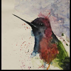 bird 0717, 10 x 13 inch, vishal dhiman,animal paintings,paintings for bedroom,drawing paper,watercolor,10x13inch,GAL043339833