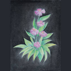 floral sketch, 12 x 8 inch, jenish kenon sankhedawala,paintings for office,flower paintings,paper,charcoal,12x8inch,GAL042699862