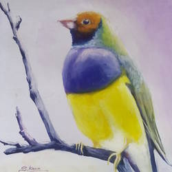 a bird, 15 x 23 inch, kiran s,paintings,wildlife paintings,paintings for living room,hardboard,acrylic color,15x23inch,GAL043569892