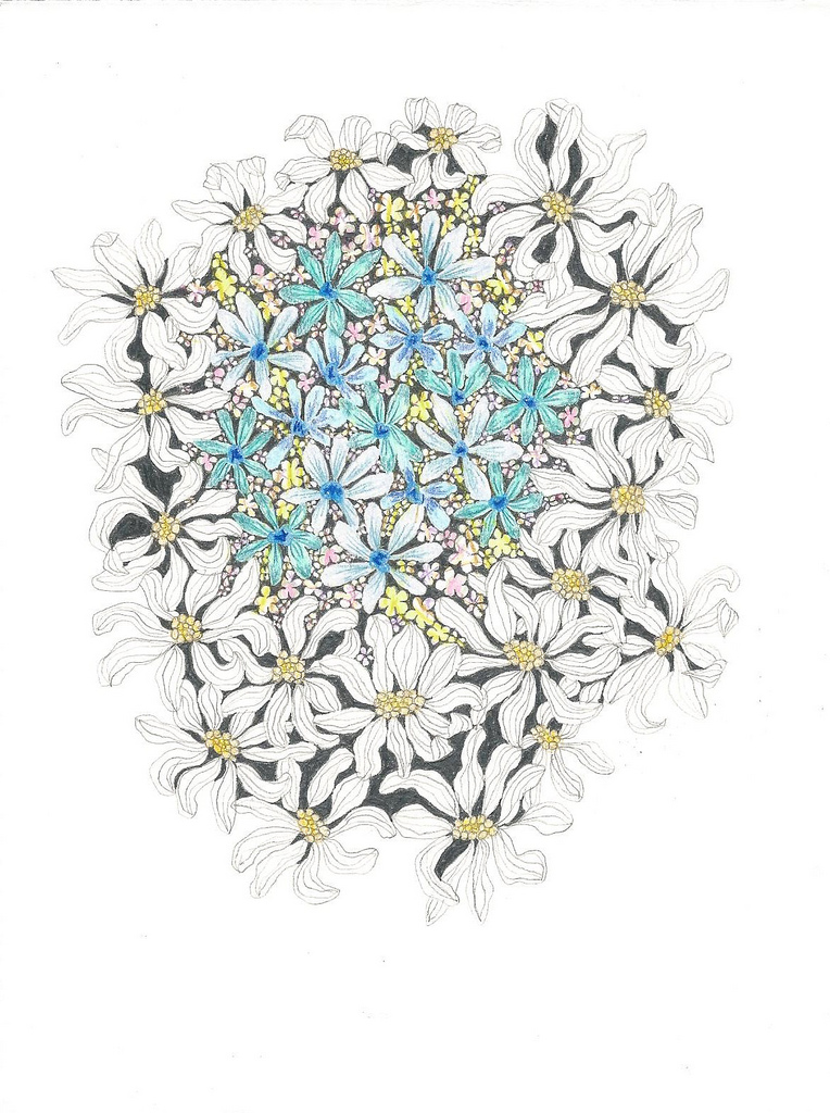 Flowerscape November 15 - 2
