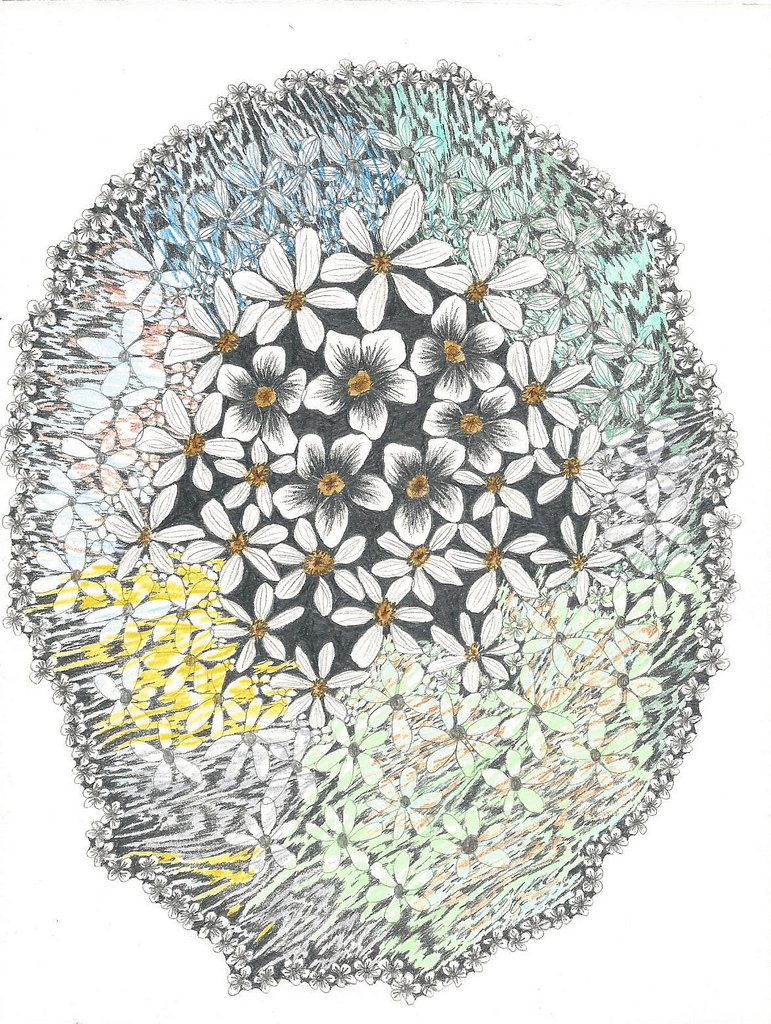 Flowerscape November 19