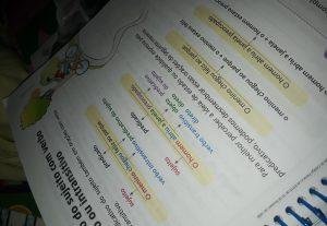 Ensino regras de português