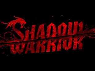 25-shadowwarrior-box