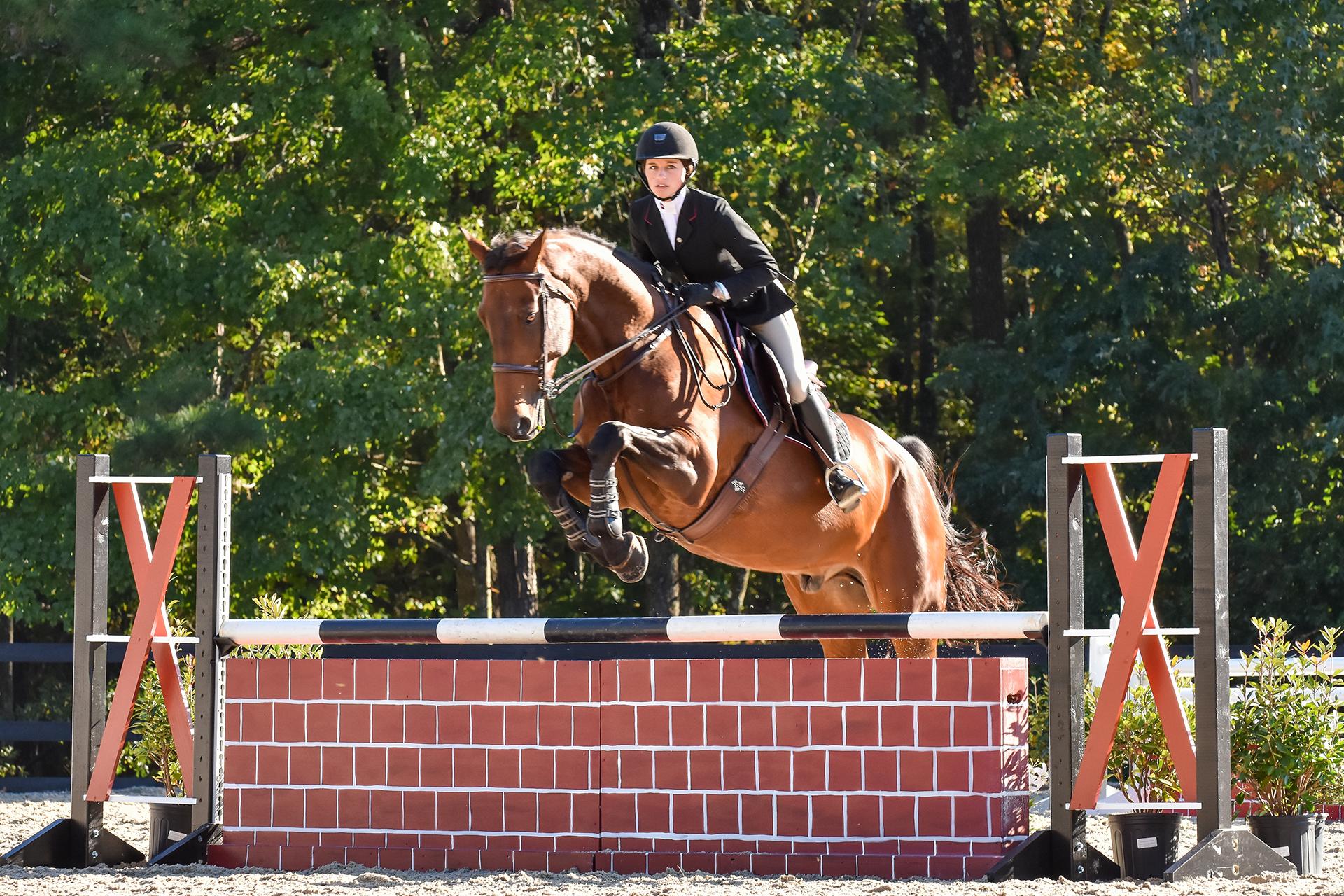 Madison Brayman Equestrian University Of South