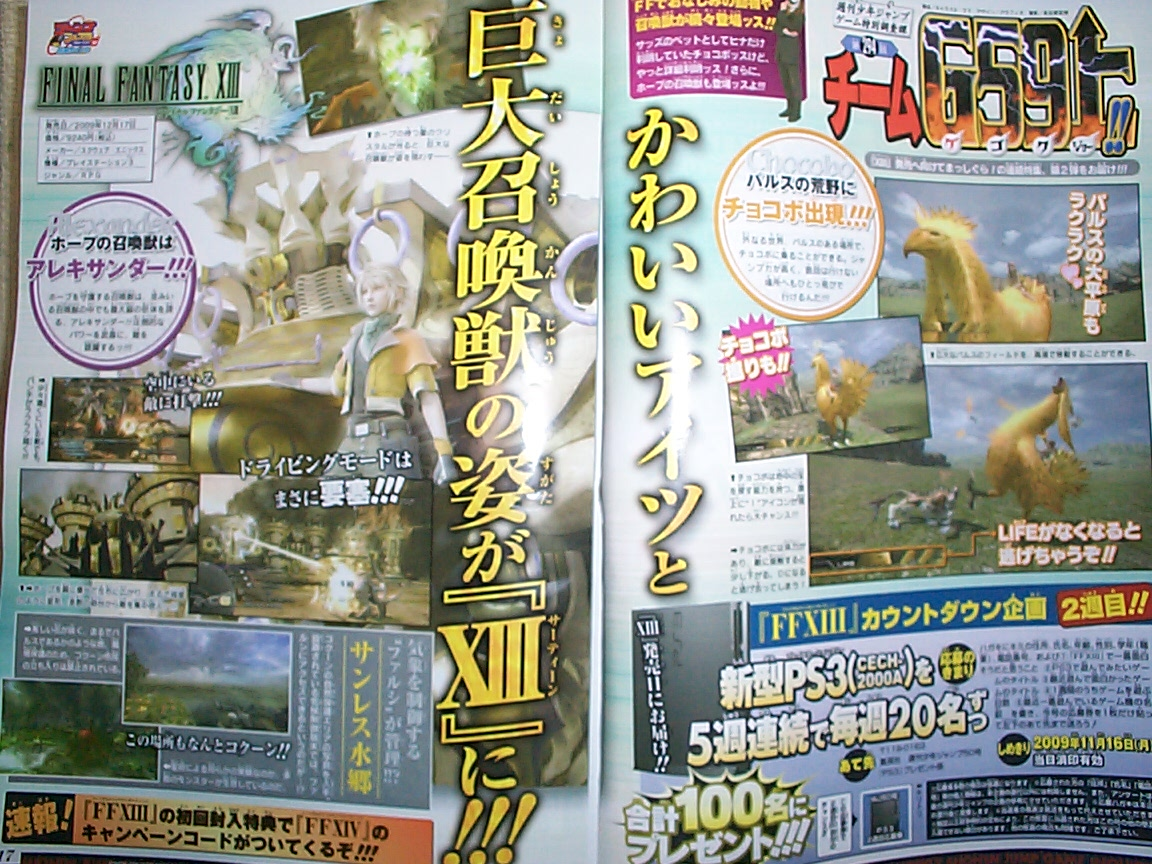 Rumor: Campaign Codes for FFXIV? (oh yeah and some Chocobo images