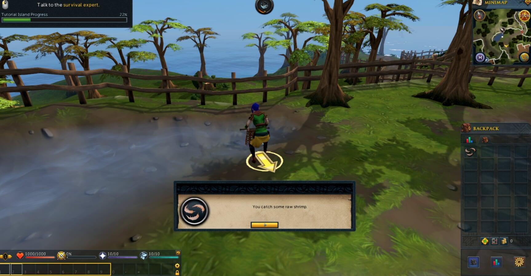 Runescape Review | Gammicks