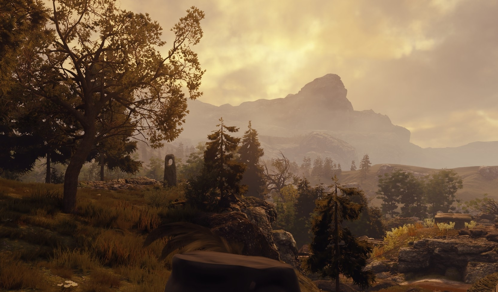 GreedFall Review | Gammicks