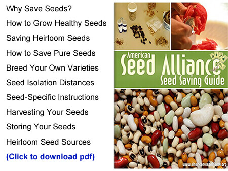 ASA Seed Saving Guide