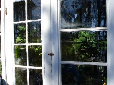 $5 breezeway greenhouse