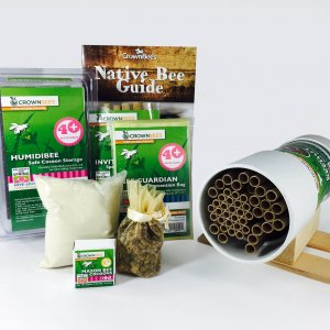 BeeWorks Hut