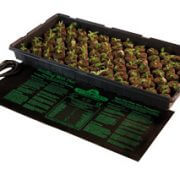 seedling-heat-mat-3