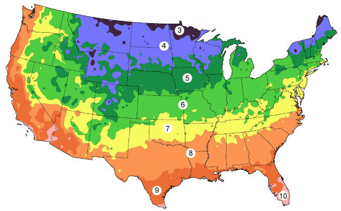 US Hardiness Grow Zone Chart
