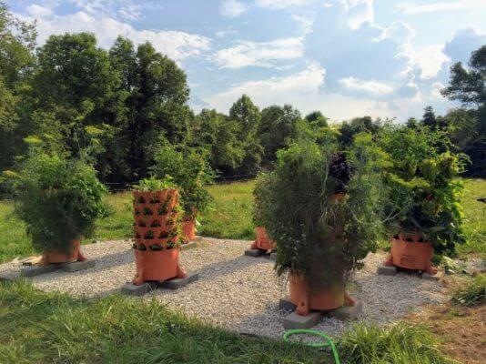 Garden towers maximize space